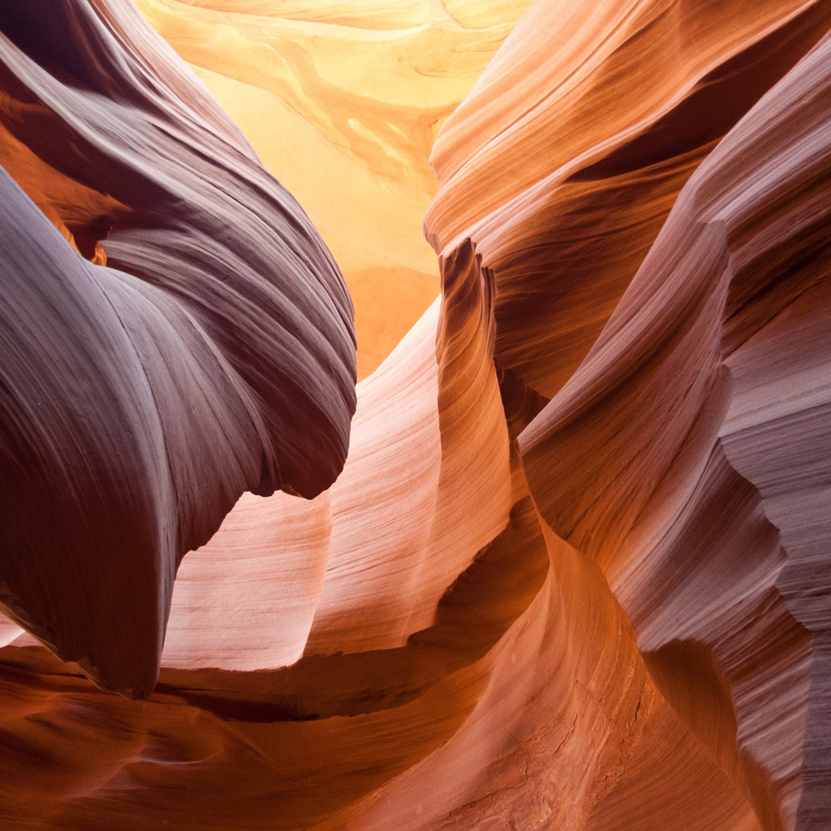 Antelope Canyon Tours from Phoenix Featured Photo