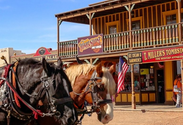 Tombstone Tours Stagecoach