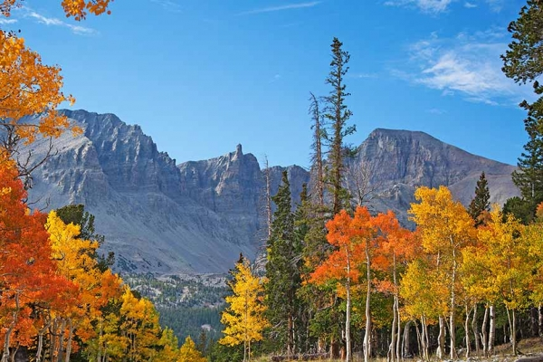 Great Basin National Park - Autumn by Sydney Martinez/TravelNevada